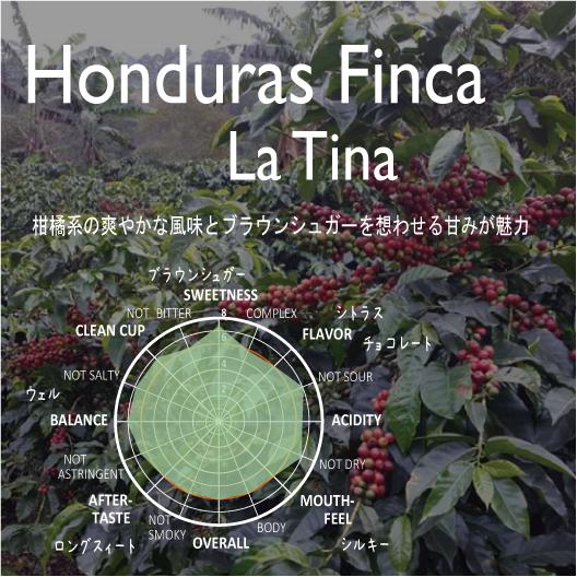 《Top Specialty》ホンジュラス フィンカ ラ ティナ