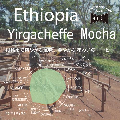 《Top Specialty》エチオピア イルガチェフェ モカ