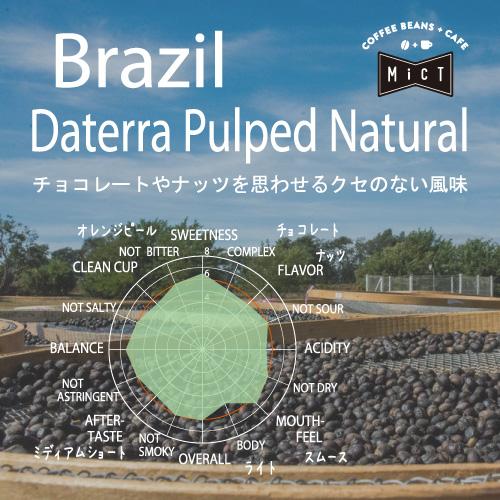 《single》ブラジル ダテーラ パルプドナチュラル