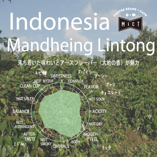 《single》インドネシア マンデリン リントン