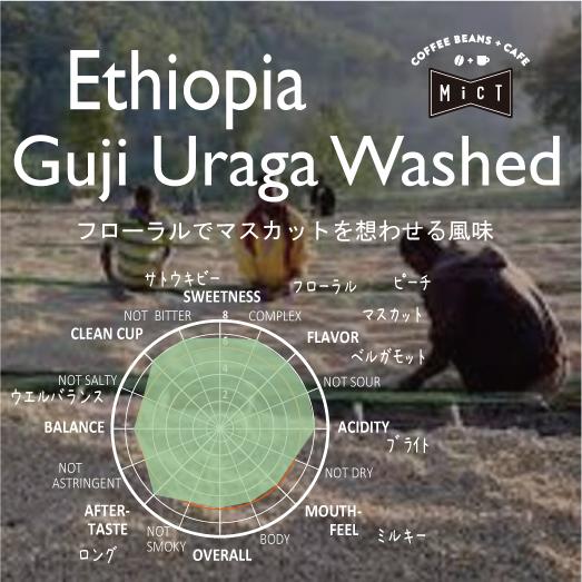《Top Specialty》エチオピア グジ ウラガ