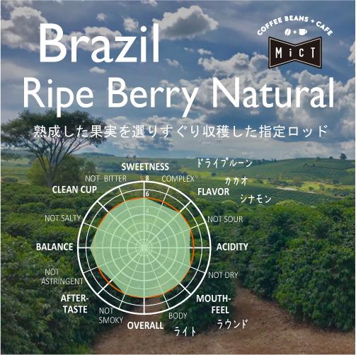 《Top Specialty》ブラジル 超熟ベリーナチュラル